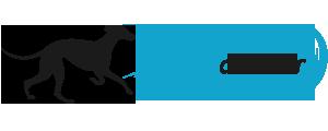 Asociación Galgas del Mar | Galgos en adopción.